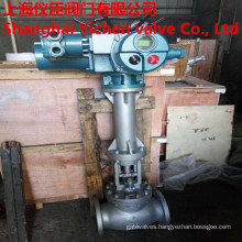 Electric Flange Type Extension Rod Globe Valve